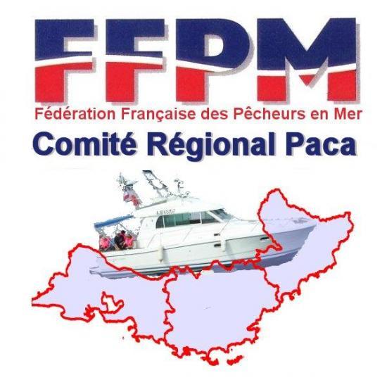 Logo ffpm paca